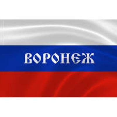 Автосканеры в Воронеже